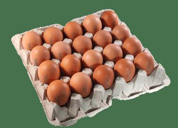 Яйца Столовые, ячейка СВ - 20 шт.